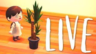 14th May - Animal Crossing New Horizons ~ Sqaishey Stream