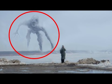 5 Mysterious Creatures Caught On Came