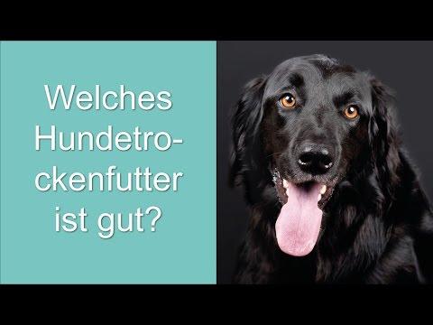 Welches Hundetrockenfutter ist gut?