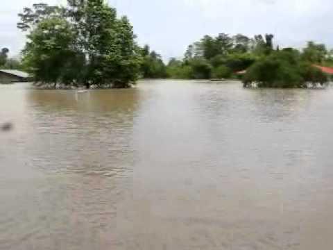 Loretano muestra un distrito de su región completamente inundado