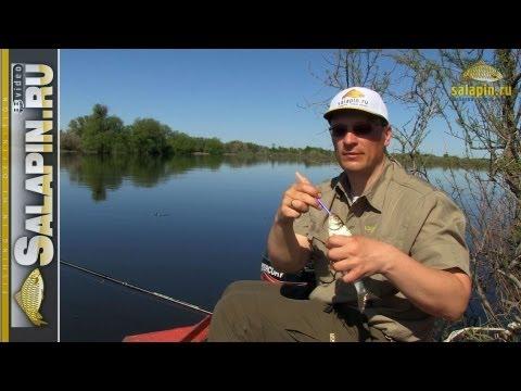 все о летней рыбалке