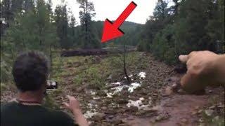 Video Direkam Dari Jauh!! Pria ini Kaget!! Di Tengah Hutan Tiba-tiba Terjadi Kejadian Mengerikan! Lihat! MP3, 3GP, MP4, WEBM, AVI, FLV Mei 2019