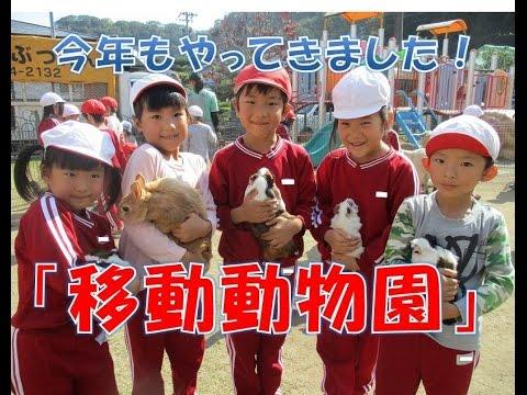 今年もはちまん保育園(福井市)に移動動物園がやってきました!動物とのふれあいを楽しみました!