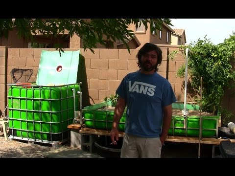 NEW IBC Aquaponics Build