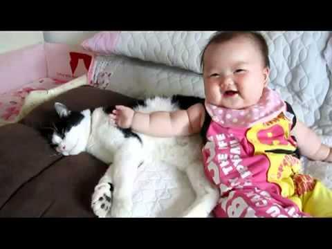 Bé với mèo - Ai dễ thương hơn ai?