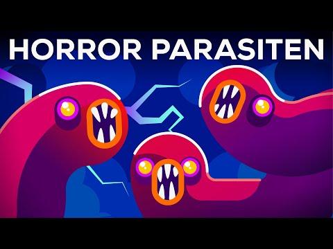 Schaurige Parasiten – Vernachlässigte Krankheiten