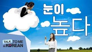 #3 Intermediate Korean Lesson - Ep. 3 - 눈이 높다