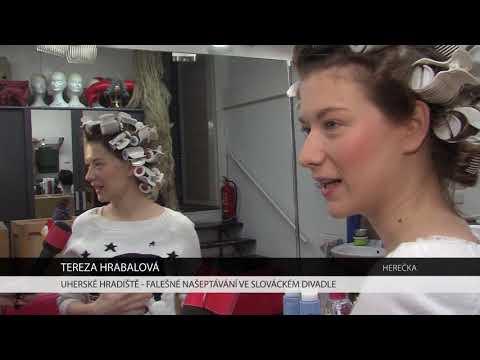 TVS: Deník TVS 22. 11. 2017