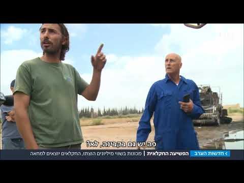 """טרור חקלאי: """"המערב הפרוע זה כאן"""""""