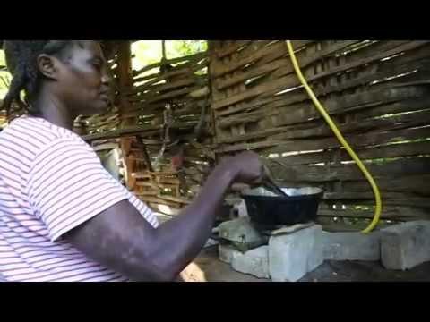 Gisele Bundchen for Biogas