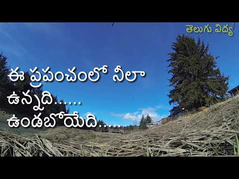 Good Morning Quotesin Telugu గుడ్ మార్నింగ్ కొటేషన్ #1