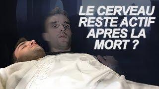 Video LE CERVEAU RESTE ACTIF APRÈS LA MORT ? Vrai Ou Faux #43 MP3, 3GP, MP4, WEBM, AVI, FLV Agustus 2018