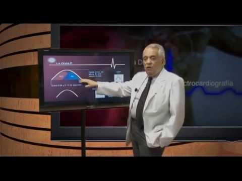 Taller de Interpretación del Electrocardiograma Normal