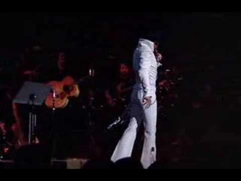 Elvis - Polk Salad Annie