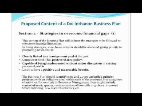 Elements for a Business Plan : Dr. Daniel Navid