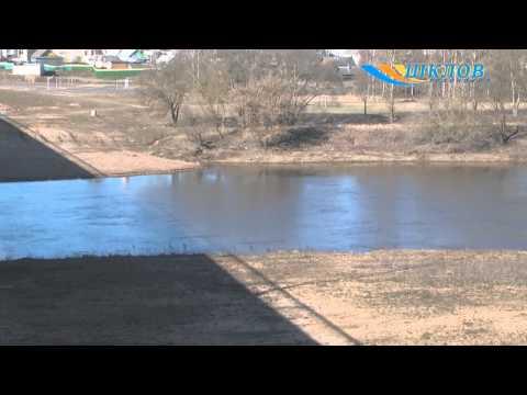 прогноз клева на чигиринском водохранилище