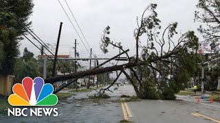 Scenes From Hurricane Michael's Destruction In The Florida Panhandle | NBC News