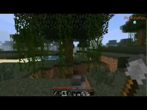 Minecraft Co-Op: PcuKeuKen и DiZick. 1 часть