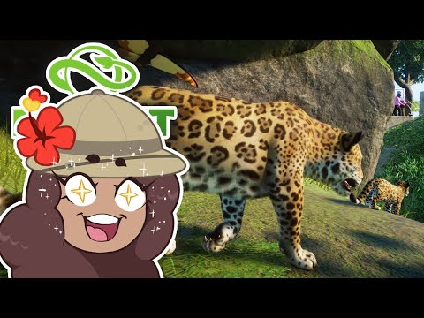 Spoiling a Pair of JAGUAR Princesses!! 🦙 Jungle Expedition! • #10