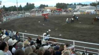 Dillon (MT) United States  City new picture : Dillon Montana Rodeo Wild Horse Race