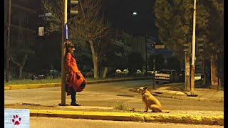 Walking empty streets during lockdown by The Orphan Pet