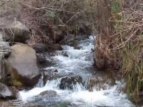 Arroyo del Balatín y Arroyo del Postuelo de Istán
