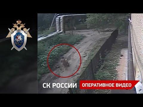 На 2-летнюю девочку упала болгарка с высоты