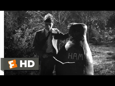 To Kill A Mockingbird - To Kill a Mockingbird Movie Clip - watch all clips http://j.mp/zaZY18 click to subscribe http://j.mp/sNDUs5 When Jem (Philip Alford) and Scout (Mary Badham) ...