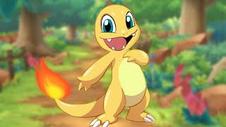 Shiny Charmander in Let's Go After 833 REs by SkulShurtugalTCG