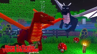 Video HOW TO TRAIN YOUR DRAGON - THE FIRE DRAGONS ATTACKED?! #26 w/ Little Lizard MP3, 3GP, MP4, WEBM, AVI, FLV Juni 2018