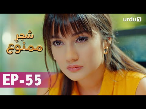Shajar-e-Mamnu | Episode 55 | Turkish Drama  | Forbidden Fruit | Urdu Dubbing | 24 February 2021