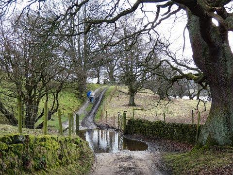 Pateley Bridge   Gouthwaite Reservoir round  | yorkshire dales  Walks