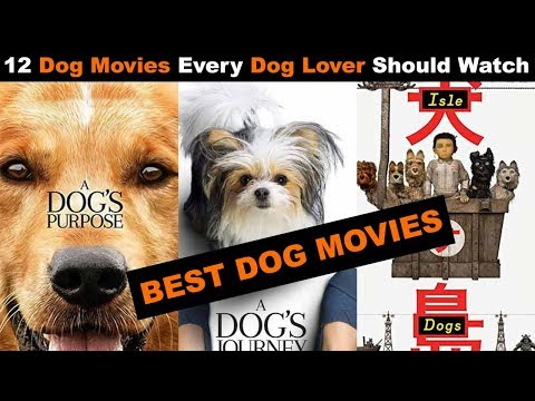 12 Dog Movies Every Dog Lover Should Watch