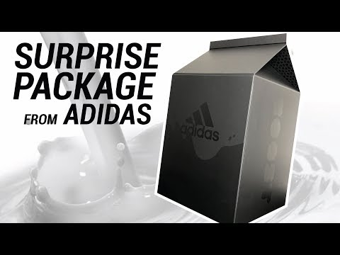 SURPRISE ULTRA BOOST PACKAGE FROM ADIDAS!