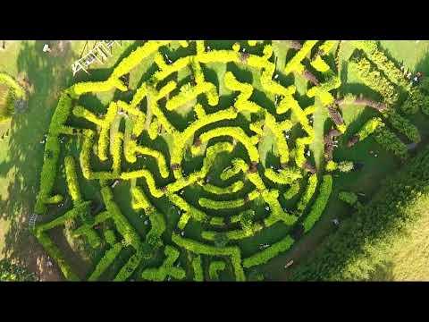 Beverīnas koka skulptūru labirinti