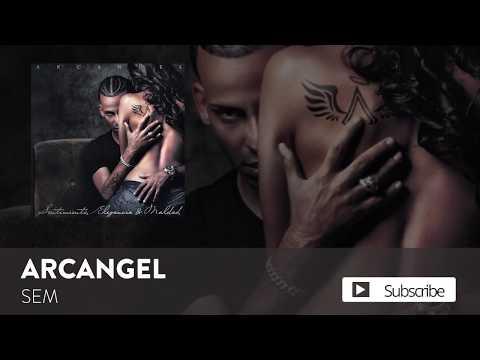 SEM (Audio) - Arcangel (Video)