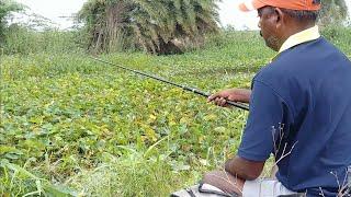 Video Fish hunting    Rohu fish catch MP3, 3GP, MP4, WEBM, AVI, FLV Maret 2019