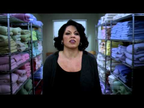 grey's anatomy - the story by sara ramirez