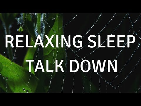 RELAXING SLEEP TALK DOWN (With Music) A Guided SLEEP Meditation To Help You Sleep Deeply