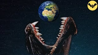 Video 5 Unknown Beasts You Won't Believe Exist In Real Life. MP3, 3GP, MP4, WEBM, AVI, FLV Desember 2018
