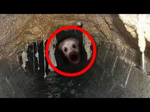 10 creature misteriose riprese nelle fogne
