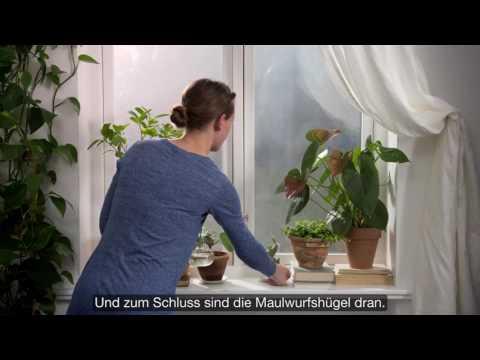 IKEA: Geheimtipps eines Inneneinrichters: Fensterbank gestalten