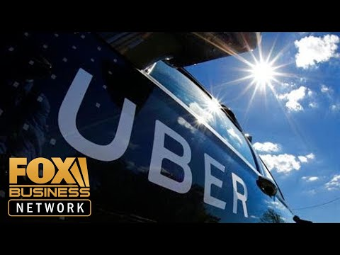 Uber is the Amazon of transportation: Shervin Pishevar