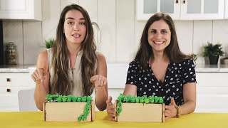 We Tried to Build an Edible Succulent Garden! • Tasty by Tasty