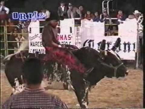 Vitoque De Tenancingo Vs El Alacran De Marcelino Vicario (2001)