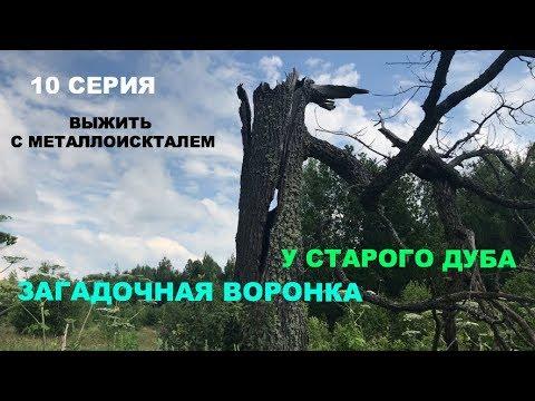 Загадочная воронка в лесу и редкая находка