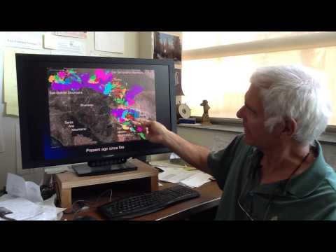 UC Riverside Fire Ecologist Makes Predictions For Southern California's 2015 Fire Season