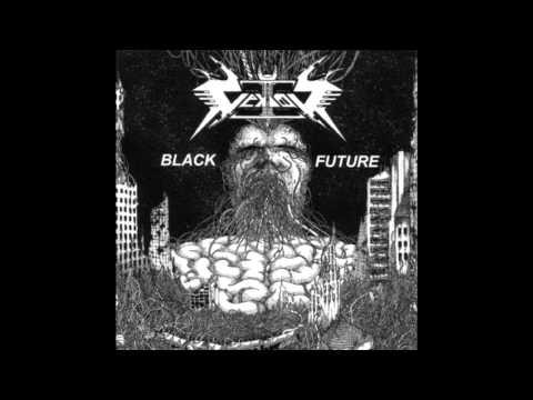 Vektor- Accelerating Universe