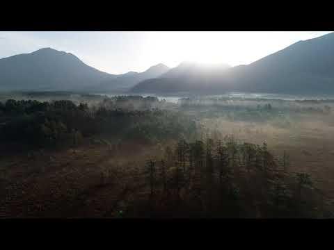朝霧の戦場ヶ原