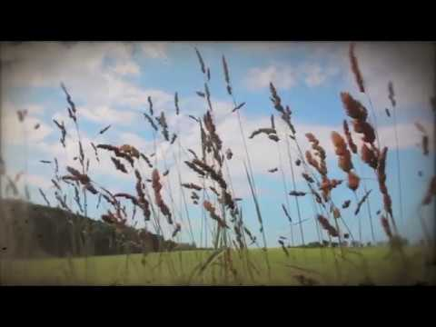 Youtube Video FVhu6jfDtec